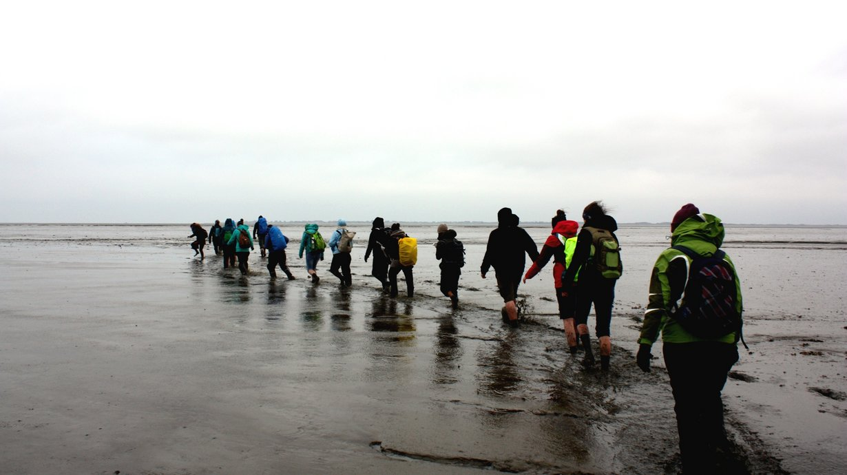 Gruppe läuft im Entenmarsch durch das Wattenmeer