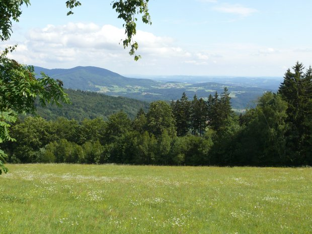 Blick in das Waldpanorama Naturpark Bayerischer Wald