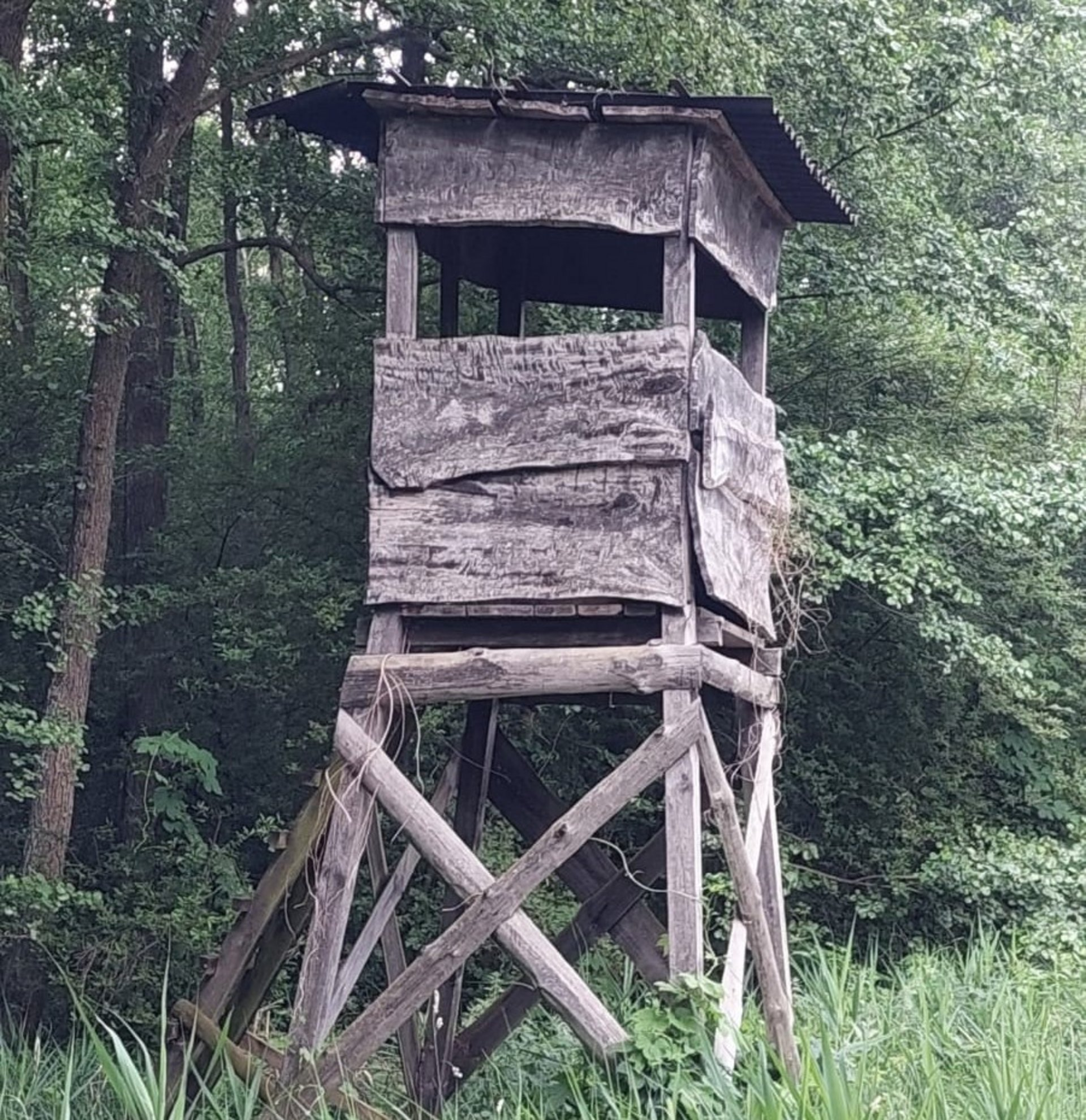 Hochsitz im Naturschutzgebiet (Foto Johannes von Hering)