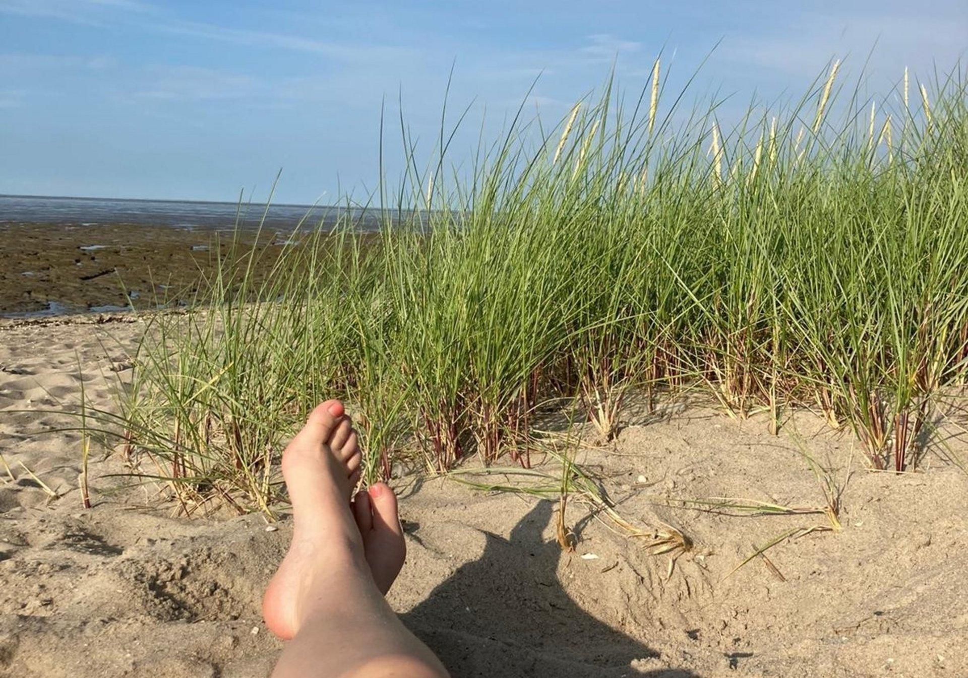 Abschluss eines spannenden ersten Tages am Strand (Foto Karina Bohnenkamp)