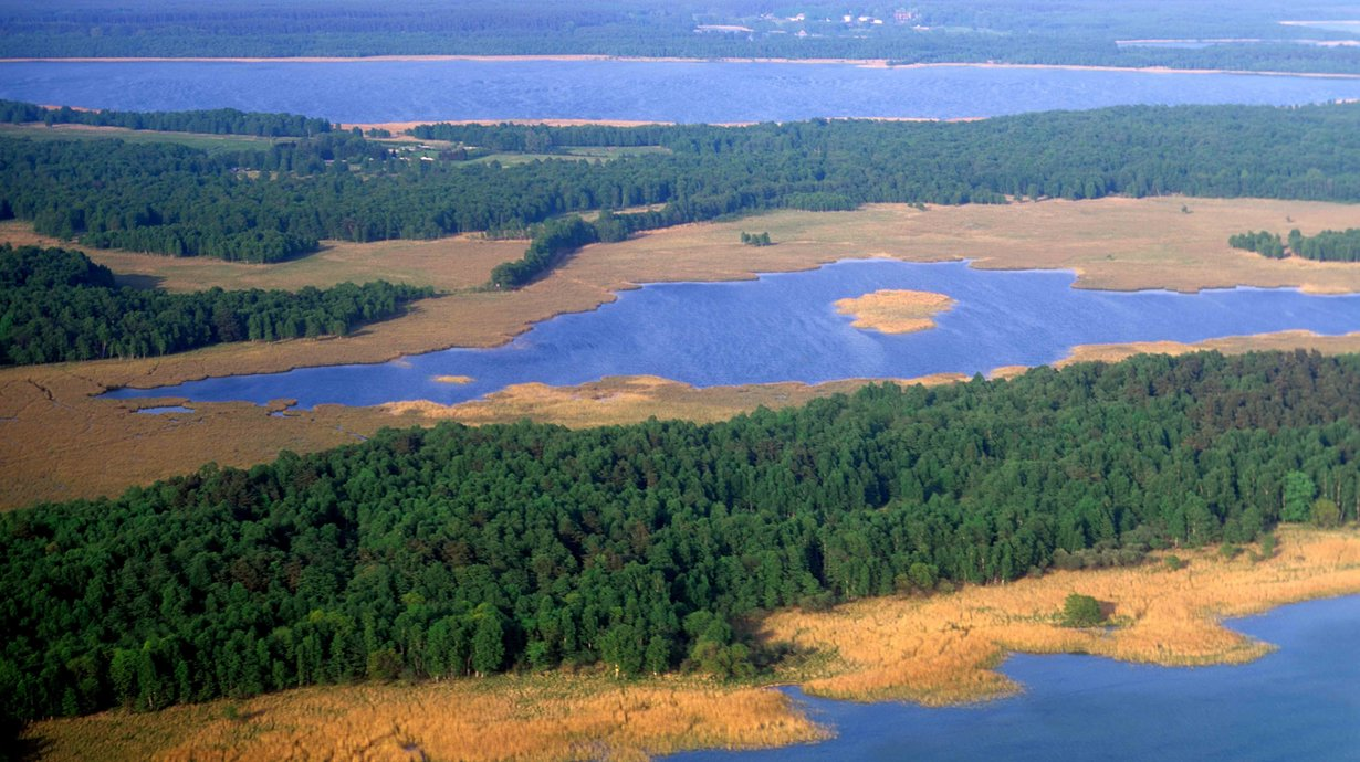 Seenlandschaft Müritz