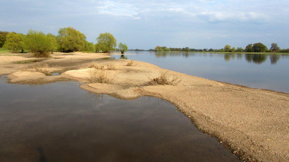 Flusslandschaft Elbe Brandenburg