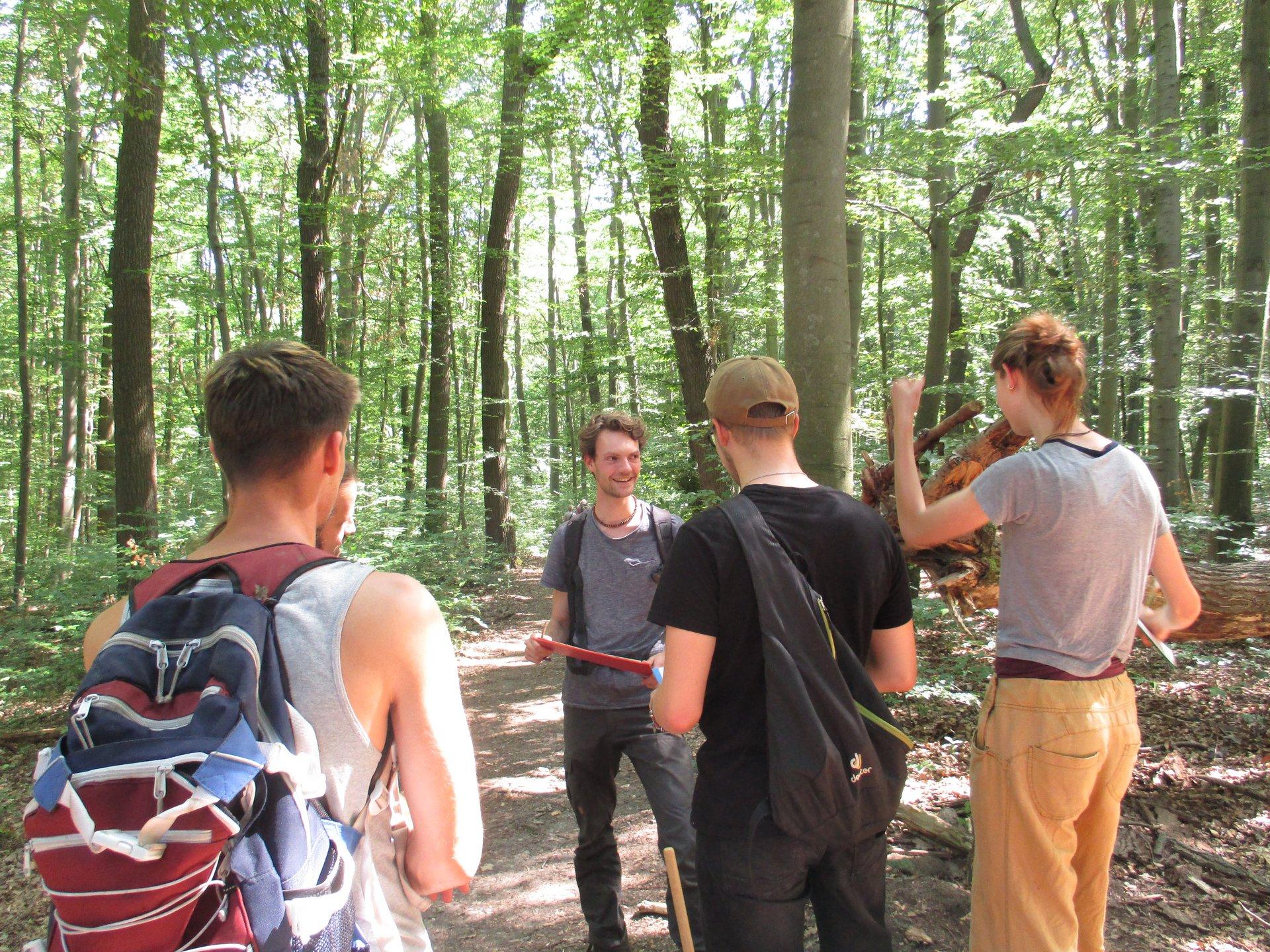 Menschen im Wald Hainich