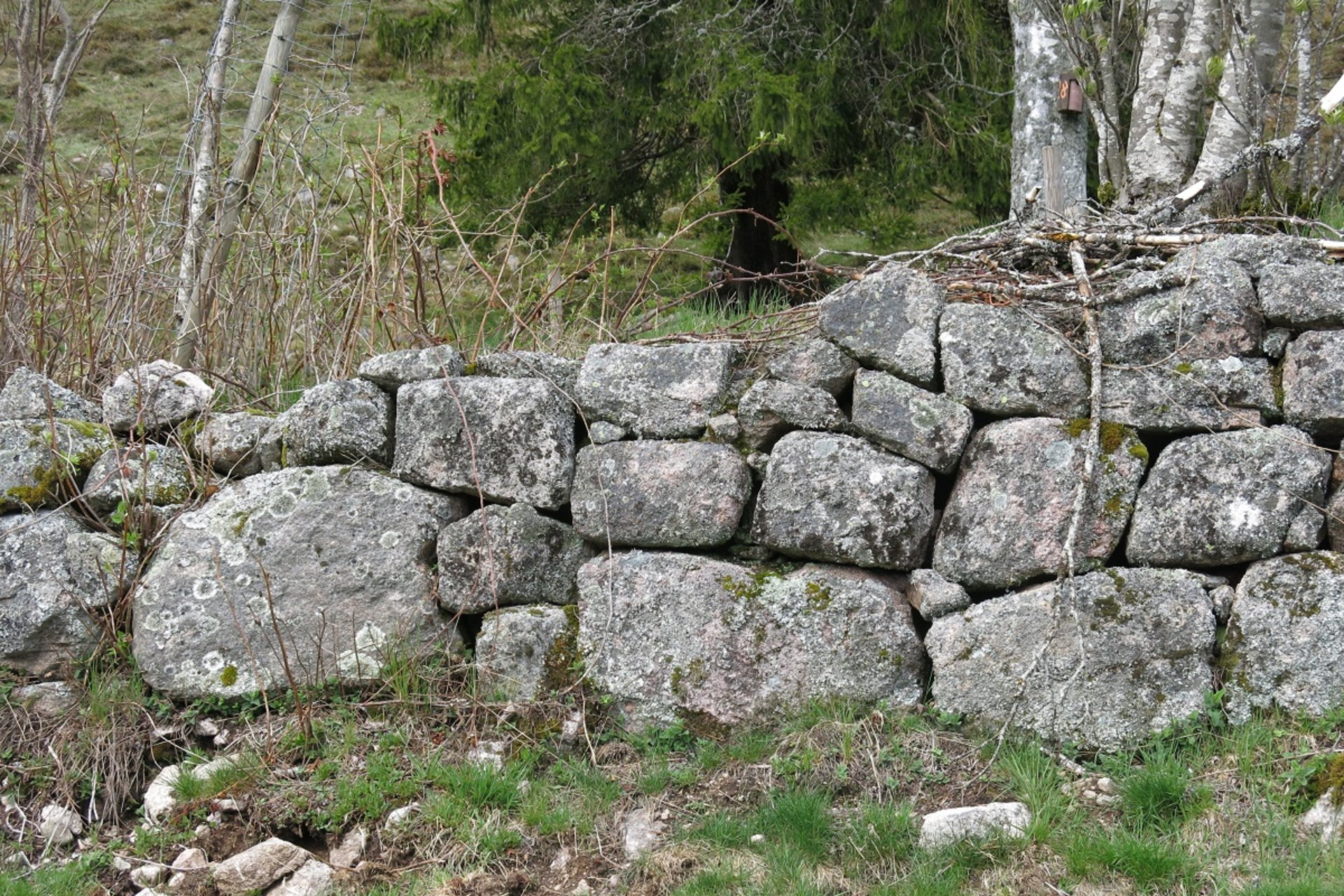 Ansicht einer Trockenmauer (Foto Leonie Jurowski)