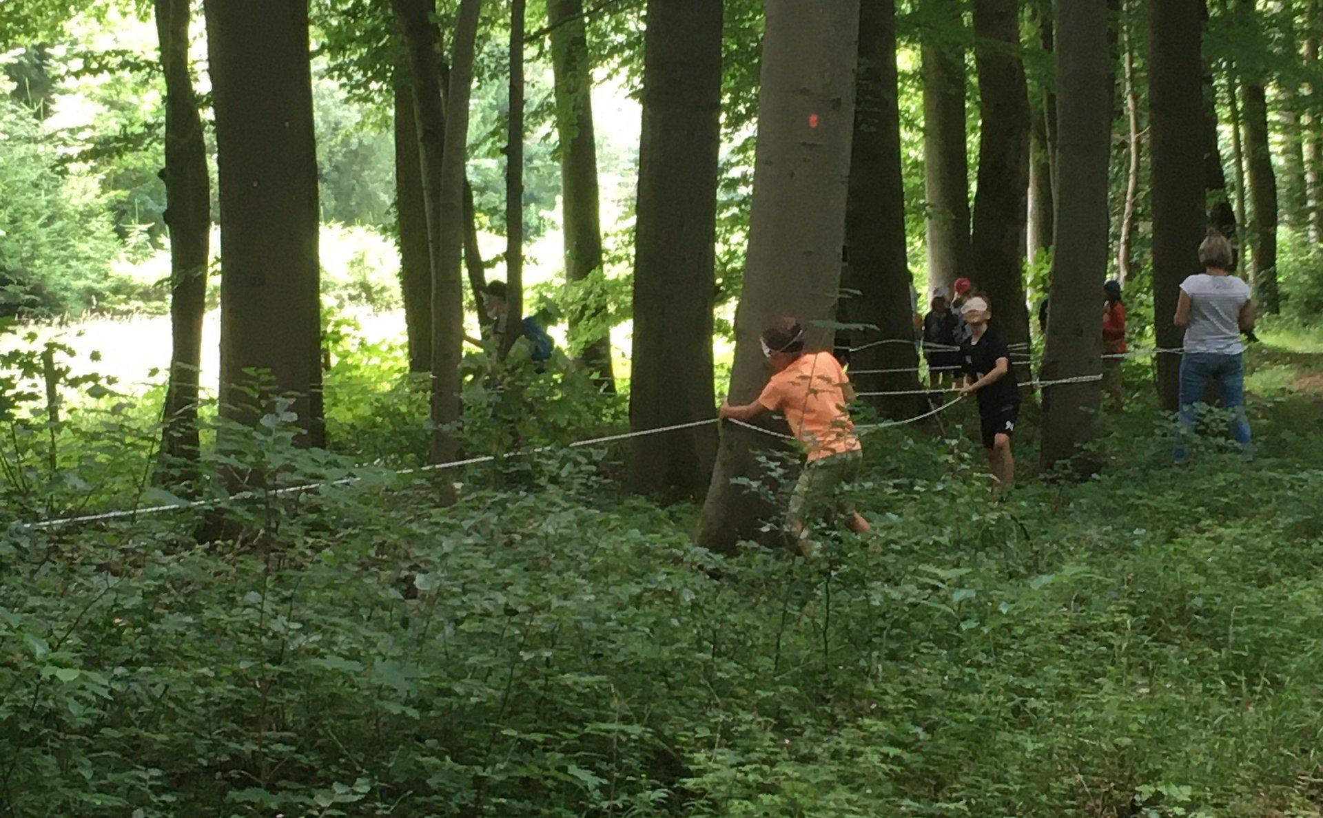 Mit Kindern auf Waldwanderung (Foto Mareike Schröder)
